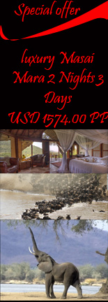 Special Best offer luxury masai mara wildebeest migration safari 2 nights