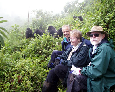 How close can you be to gorillas. Always listen to your guide.